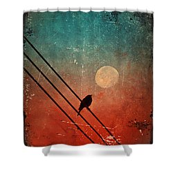 Moon Talk Shower Curtain