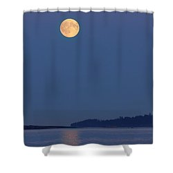 Moonlight - 365-224 Shower Curtain by Inge Riis McDonald