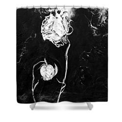 Moonlight And Roses Shower Curtain