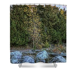Moonlight Bay Bedrock Beach Shower Curtain
