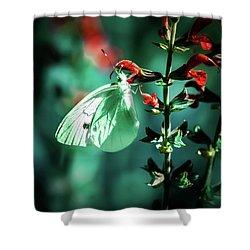 Moonlight Butterfly Shower Curtain