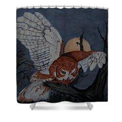 Moonlight Flight Shower Curtain by Sandra Maddox