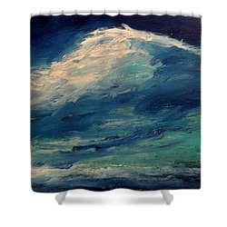 Moonlight Shower Curtain by Fred Wilson