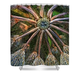 Moonlight Minuet Shower Curtain