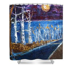 Shower Curtain featuring the painting Moonlight On Path To Beach by Betty Pieper
