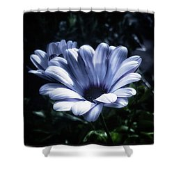 Shower Curtain featuring the photograph Moonlit Petals. From The Beautiful by Mr Photojimsf