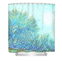 Shower Curtain featuring the digital art Moonlit Winter Trees In Blue - Boulder County Colorado by Joel Bruce Wallach