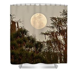 Moonrise Over Southern Pines Shower Curtain