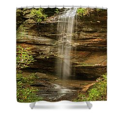 Moore Cove Falls Shower Curtain