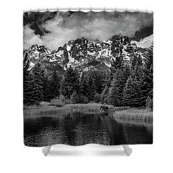 Shower Curtain featuring the photograph Moose At Schwabacher's Landing by Gary Lengyel