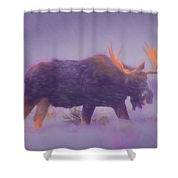 Moose In A Blizzard Shower Curtain