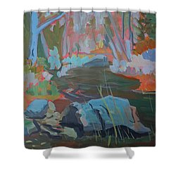 Shower Curtain featuring the painting Moose Lips Brook by Francine Frank