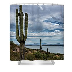Shower Curtain featuring the photograph More Beauty Of The Southwest  by Saija Lehtonen