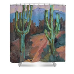 Shower Curtain featuring the painting Morning At Fort Apache by Diane McClary