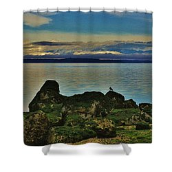 Shower Curtain featuring the photograph Morning Beach Walk by Craig Wood