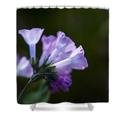 Morning Bluebells Shower Curtain by Dan Hefle