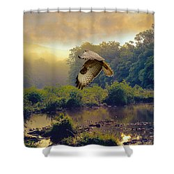 Morning Buzzard Shower Curtain by Roy  McPeak