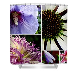 Morning Delight Shower Curtain by Priscilla Richardson