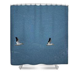 Shower Curtain featuring the photograph Morning Flight by Brian Duram