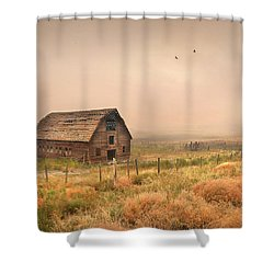 Shower Curtain featuring the photograph Morning Flight by John Poon