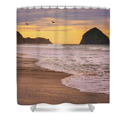Shower Curtain featuring the photograph Morning Flight Over Cape Kiwanda by Darren White