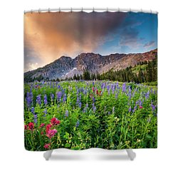 Morning Flowers In Little Cottonwood Canyon, Utah Shower Curtain