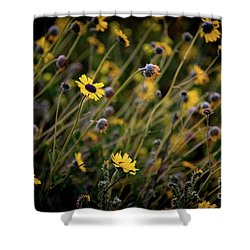 Morning Flowers Shower Curtain by Kelly Wade