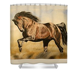 Morning Game Shower Curtain by Melita Safran