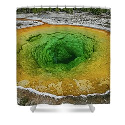 Morning Glory Shower Curtain by Alpha Wanderlust