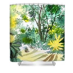Morning Glory Shower Curtain by Anil Nene