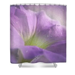 Morning Glory Shower Curtain by Ann Lauwers
