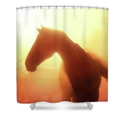 Morning Glory - Three Bars Ranch Shower Curtain