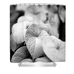 Morning Glory Vines Shower Curtain