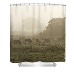 Shower Curtain featuring the photograph Morning Graze by Gary Bridger
