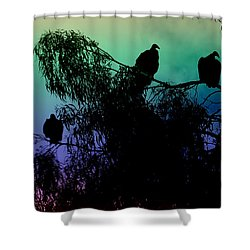 Shower Curtain featuring the photograph Morning Has Broken by Rhonda Strickland
