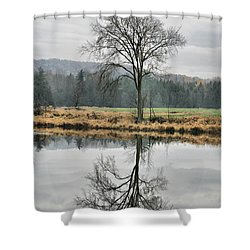 Morning Haze And Reflections Shower Curtain by Deborah Benoit