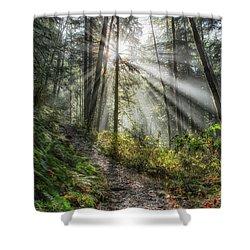 Morning Hike Shower Curtain