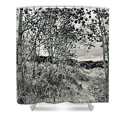 Shower Curtain featuring the photograph Morning In The Dunes by Michelle Calkins