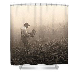 Shower Curtain featuring the photograph Morning In The Fields by Stephen Flint