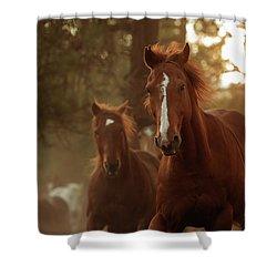 Morning Jog - Three Bars Ranch Shower Curtain