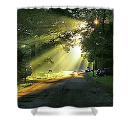 Shower Curtain featuring the photograph Morning Light by Brian Wallace