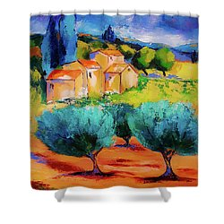 Shower Curtain featuring the painting Morning Light By Elise Palmigiani by Elise Palmigiani