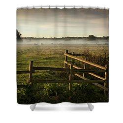 Morning Light Shower Curtain by Ian Merton