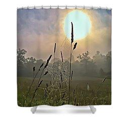 Morning Light Shower Curtain by Kerri Farley