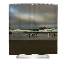 Morning Light On The Beach Shower Curtain