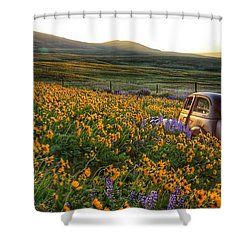 Morning Light On The Old Rusty Car Shower Curtain by Lynn Hopwood