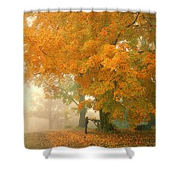Morning Mail Cambridge Vermont Shower Curtain