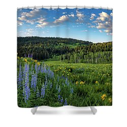 Morning Meadow Shower Curtain