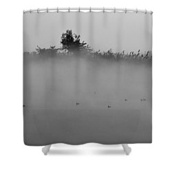 Morning Mist At Wetland Of Harike Shower Curtain