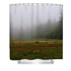 Shower Curtain featuring the photograph Morning Mist Solitude by Tikvah's Hope